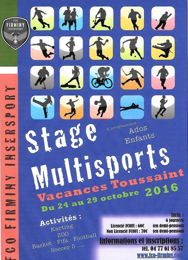 Stages FCO Firminy-Insersport